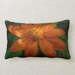 Sunrise on Mexican Sunflower Lumbar Pillow