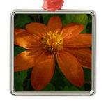 Sunrise on Mexican Sunflower Orange Floral Metal Ornament
