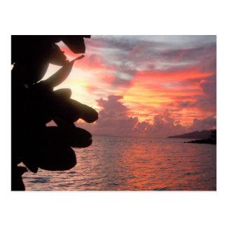 Sunrise on South Pacific Island >Postcard Postcard
