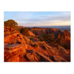 Sunrise on the Grand View Trail at CO Monument Postcard