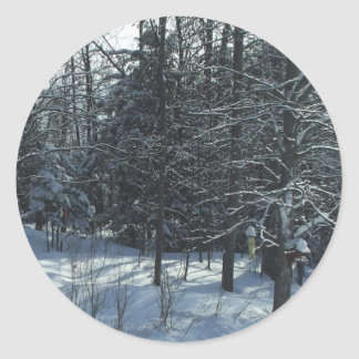 Sunrise on Winter Trees  Scene Classic Round Sticker