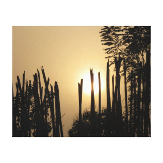 Sunrise over a Bamboo Fence Canvas Prints