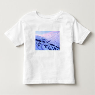 Sunrise over Snowy Mountains Toddler T-shirt