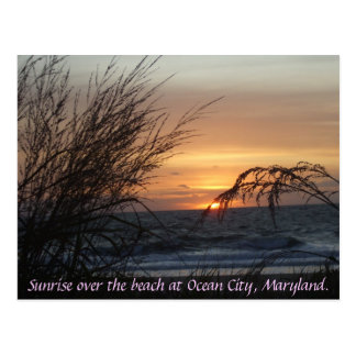 Sunrise over the beach at... postcard