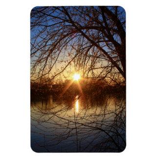 Sunrise Rays Light Up Tree Buds Magnet
