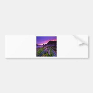 Sunrise Sheer Purple Bumper Stickers