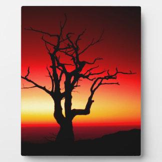 Sunrise Shenandoah Photo Plaques
