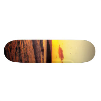 Sunrise Skate Board