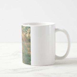 Sunrise Sunbeams Nashville Coffee Mug