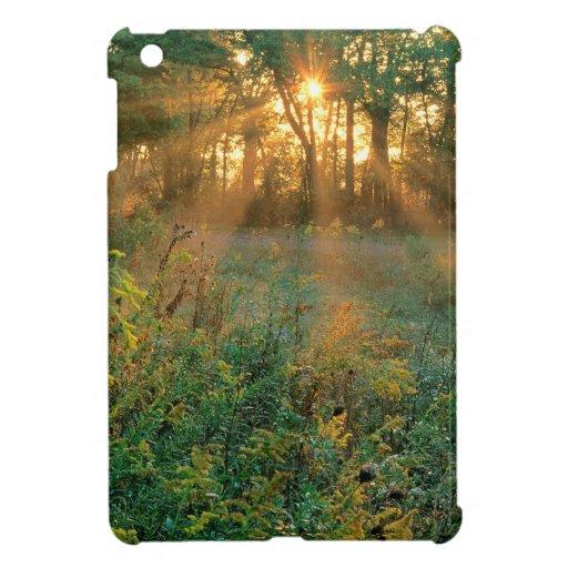 Sunrise Sunbeams Nashville iPad Mini Case