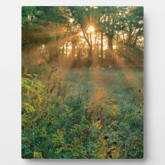 Sunrise Sunbeams Nashville Photo Plaques