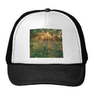 Sunrise Sunbeams Nashville Trucker Hat