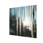 Sunrise Through Icicles Winter Nature Photography Canvas Print