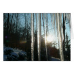 Sunrise Through Icicles Winter Nature Photography Card
