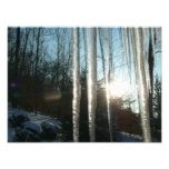 Sunrise Through Icicles Winter Nature Photography Photo Print