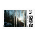 Sunrise Through Icicles Winter Nature Photography Postage
