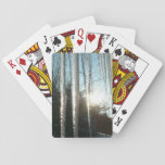 Sunrise Through Icicles Winter Photography Card Decks