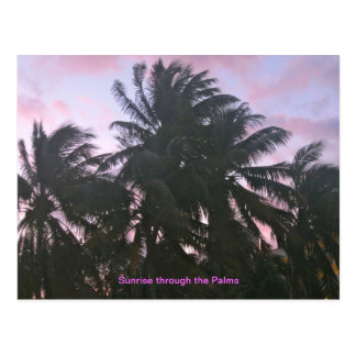 Sunrise through the palms postcard