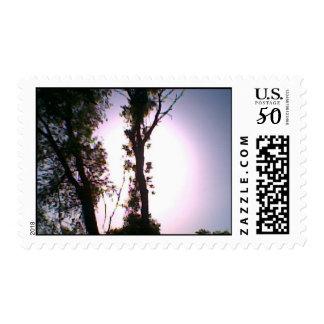 Sunrise tree 2007 postage