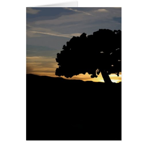 Sunrise Tree Cards