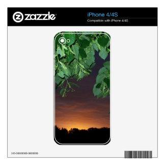 Sunrise under the trees skins for iPhone 4S