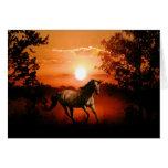 Sunrise unicorn greeting card