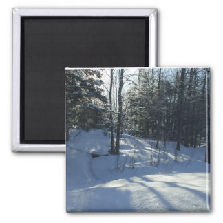 Sunrise Winter Tree Scene Magnet