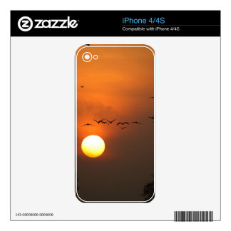 Sunrise with flocks of flying cranes skin for the iPhone 4S