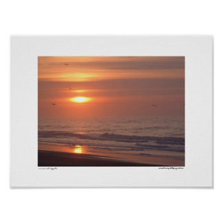 Sunrise with Seagulls Poster