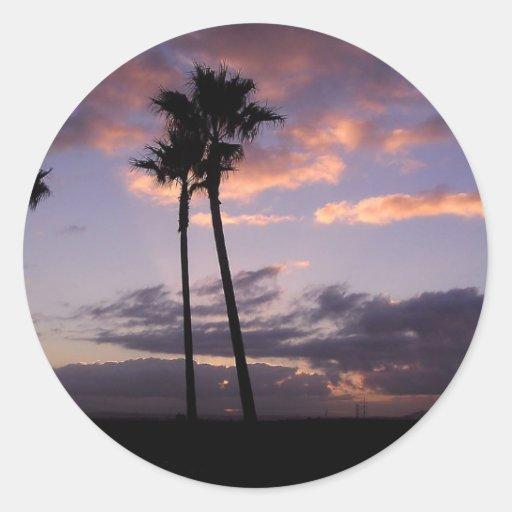 Sunrises Palm Trees Classic Round Sticker