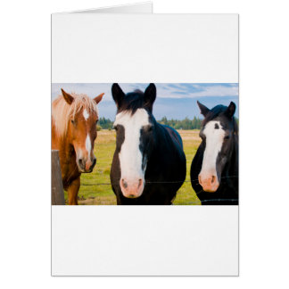 Sunriver Welcome Committee Card