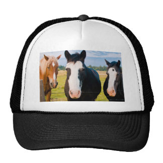 Sunriver Welcome Committee Hat