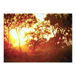 Sun's last light, in mist and trees, Australia 5x7 Paper Invitation Card