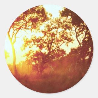 Sun's last light, in mist and trees, Australia Classic Round Sticker