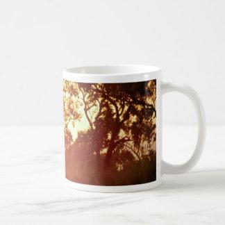 Sun's last light, in mist and trees, Australia Classic White Coffee Mug