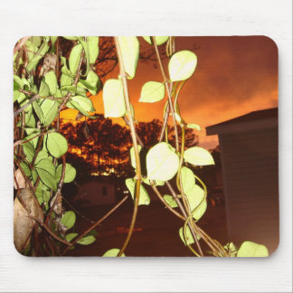 Sunset2 Mouse Pad