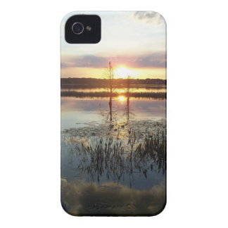 Sunset 172 Blackberry Case