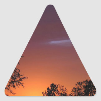 Sunset African Delight Triangle Sticker