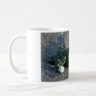 Sunset Algae Coffee Mug