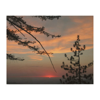Sunset Amid Pines Wood Canvas Print