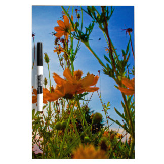 Sunset and Flowers Dry-Erase Board