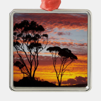 Sunset and Gum Tree, Binalong Bay, Bay of Fires, Square Metal Christmas Ornament