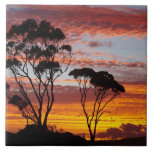 Sunset and Gum Tree, Binalong Bay, Bay of Fires, Tiles
