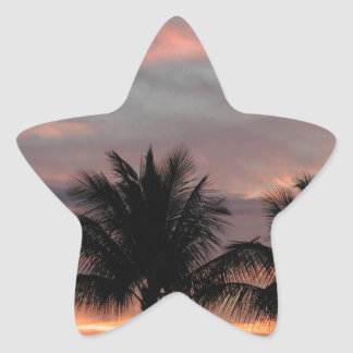 Sunset and palm trees star sticker