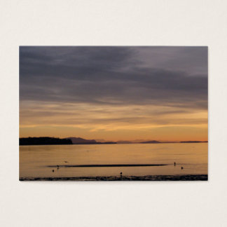 Sunset and Sea Birds Business Card
