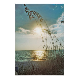 Sunset and sea oats poster