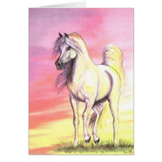 Sunset Arabian Horse Greeting Card