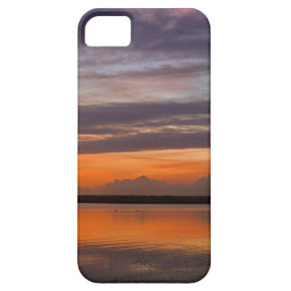 Sunset at Bandon Marsh - Iphone5 case iPhone 5 Cover