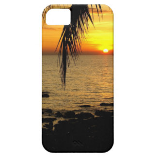 Sunset at Beach iPhone 5 Case