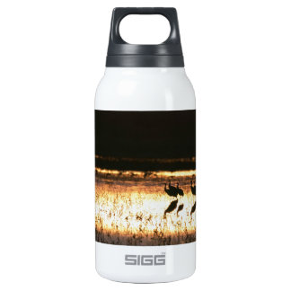 Sunset at Bosque del Apache National Park Insulated Water Bottle
